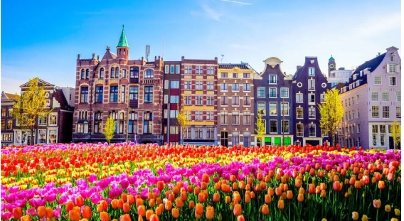 Wonderful Places to Visit in Netherlands